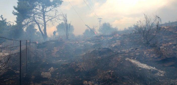 Υπό μερικό έλεγχο η φωτιά στον Βύρωνα – Παραμένει στο σημείο η Πυροσβεστική