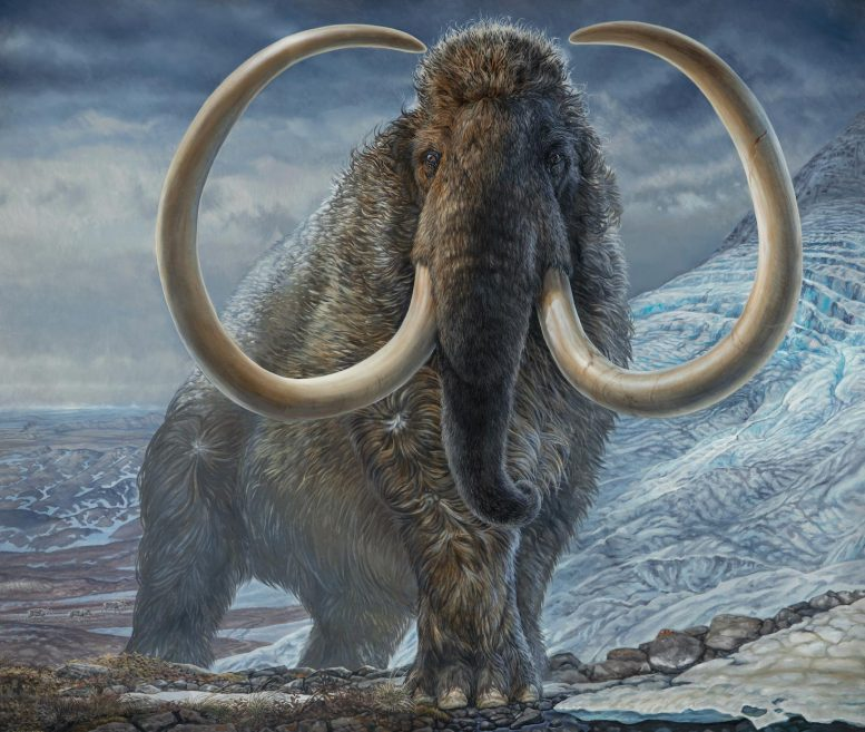 Επιστήμονες σκοπεύουν να επαναφέρουν την ύπαρξη των μαμούθ