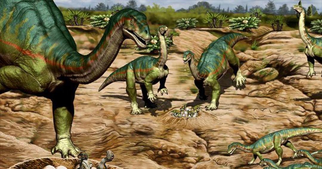 Σύνθετες κοινωνίες έφτιαχνε δεινόσαυρος της Παταγονίας